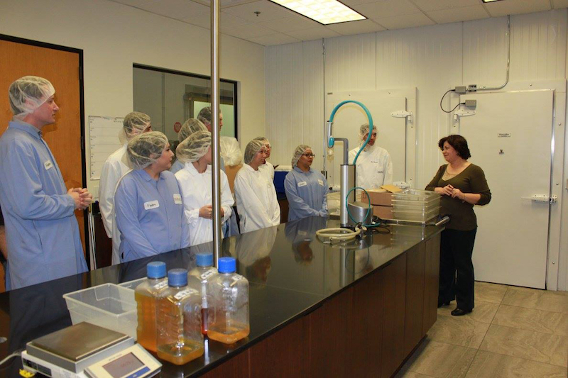 High school students on a tour Haliburton's food manufacturing and quality laboratories