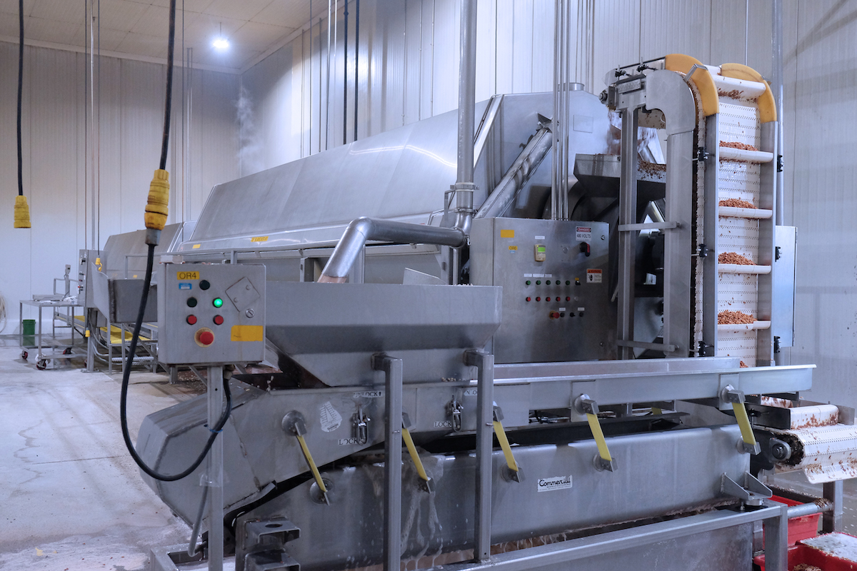 Haliburton 100 million pound capacity blancher has capacity to consistently cook Individually Quick Frozen beans